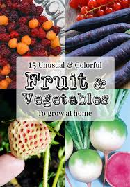 15 unusual fruits u0026 veg for the home garden