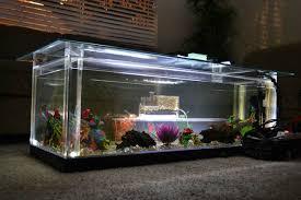 fish tank coffee table diy aquarium fish tank coffee table 8 unique designs guide patterns