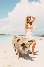 a fairly whimsical visit to u201cpig island u201d in the bahamas dress by