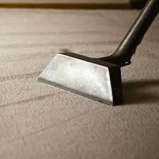 carpet upholstery cleaning seattle