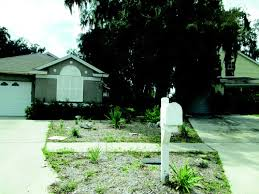 irrigation conservation of florida friendly landscaping based on