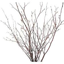 tree branches for centerpieces branch centerpieces
