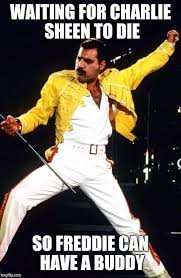 Freddie Mercury Meme - is this the real life imgflip