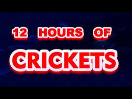 Crickets Chirping Meme - crickets sounds crickets singing cricket sounds for