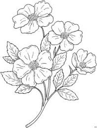 coloring page poppy coloring picture poppy free coloring sheets