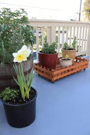 water trough planter rooftop garden u2013 freddie and me
