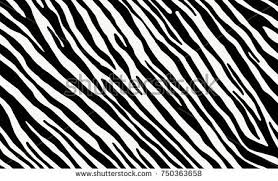 zebra pattern free download zebra print background vector download free vector art stock