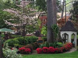 Landscaping Tyler Tx by Best 25 Azaleas Landscaping Ideas Only On Pinterest Weeds