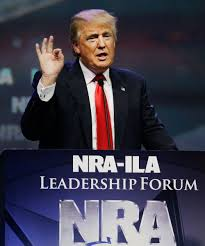 does spirit halloween take checks donald trump stance on gun rights right to bear arms