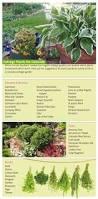 colorado u s japanese gardens comfortably casual cottage gardens boulder county home u0026 garden