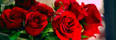 valentines specials skamania lodge s month of skamania lodge
