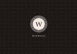 brand logo design windfall logo design branding