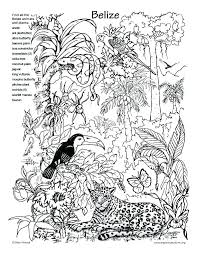 free coloring page of the rainforest tropical coloring pages tropical coloring pages best of coloring