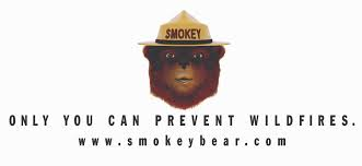 smokey bear fire safety u0026 prevention robotronics