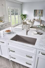 Blanco Kitchen Faucets Canada The 25 Best Blanco Sinks Ideas On Pinterest Undermount Sink