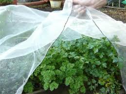 enviromesh mesh netting plant protection from pests and weather