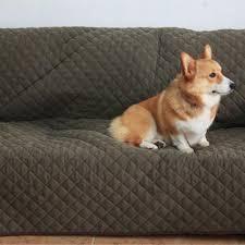protection canapé chien couverture protection canapé 188x278 cm couchage du chien animilo fr