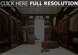master bedroom and walk in closet bedroom design ideas