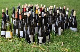 wine bottles free photo wine bottles wine bottles drink free image on