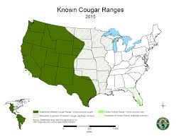 Appalachian Mountains On Map Cougars In Tennessee Tn Gov
