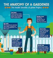 Benefits Of Urban Gardening - the anatomy of a gardener the health benefits of green fingers lv u003d