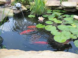 backyard 6 garden fish pond with water fountain home decor