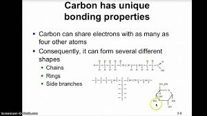 ch 3 the chemistry of organic molecules lecture 1 youtube