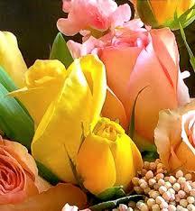 fresh flowers fresh of the day bloom fresh flowers