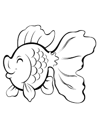 cute cartoon gold fish coloring u0026 coloring pages