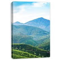 photo affections free prints choose a size photoaffections photo canvas