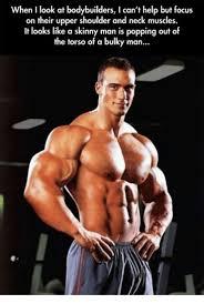 Muscle Memes - 25 best memes about torso torso memes