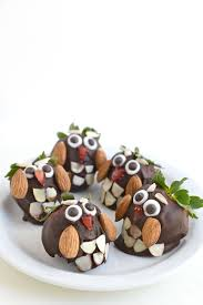 chocolate covered strawberry owls pictures photos and images for