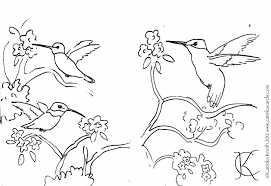 free coloring pages of birds coloring pages hummingbird coloring pages with drawing print