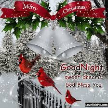 merry christmas goodnight pictures photos and images for