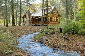 in the woods is paradise a cabin in the woods truths you can use