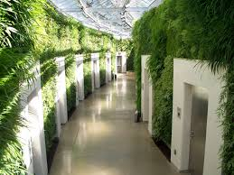 Inside Garden by Longwood Gardens Pa Longest Green Wall In The World And Awarded