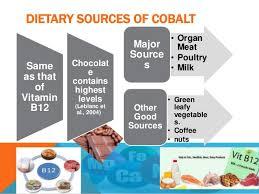 Cobalt B by Cobalt In Diet