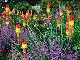 flower garden design ideas hgtv