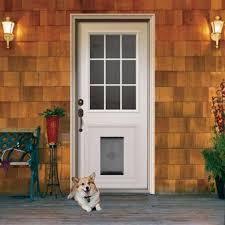 Exterior Pet Door Doors Extraordinary Door For Doors Door For