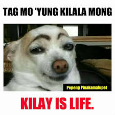 Happy Kitten Meme - pin by red abrenio on pinoy sayings quotes at hugot lines