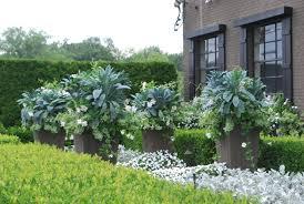 pots with tuscan kale detroit garden works planting by deborah