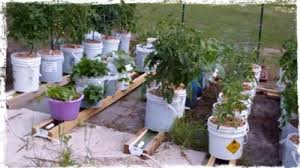 Diy Self Watering Herb Garden Diy Self Watering Gutter Garden System The Homestead Survival