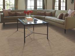 best carpet for pets shaw floors