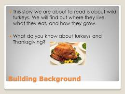what turkeys eat for thanksgiving ppt