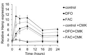 an essential cell autonomous role for hepcidin in cardiac iron