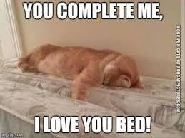 bed meme white bed