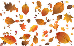 falling leaves wallpaper vector wallpapers 23367