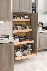 Show Cabinets Our Kitchen Renovation With Home Depot Martha Stewart Kitchen