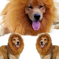 Halloween Costumes Golden Retrievers Pet Costume Lion Mane Wig Dog Halloween Clothes Festival Fancy
