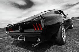 Mustang Fastback Black 1967 Ford Mustang Fastback Posters Fine Art America
